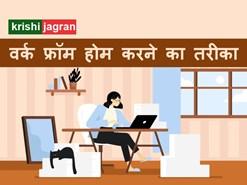 Work From Home: घर पर काम करने के 6 बेस्ट तरीके, नहीं होगी कोई दिक्कत
