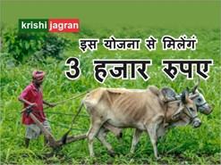 जरूरी बात: किसान इस योजना में निवेश करेंगे, तो हर महीने मिलेगा 3 हजार  रुपए