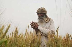 लॉकडाउन से देश के अन्नदाता पर भारी संकट, जानिए क्यों