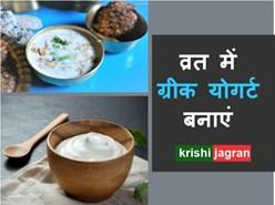 Navratri Recipe: व्रत में बनाएं एनर्जी भरा ग्रीक योगर्ट, इम्यूनिटी भी बढ़ेगी
