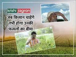 अब किसान क्रेडिट कार्ड वाले किसान चाहेंगे तभी होगा उनकी फसलों का बीमा