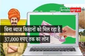 खुशखबरी : किसान बिना ब्याज के ले सकते हैं 37,000 रुपए तक का अल्पकालीन कृषि लोन
