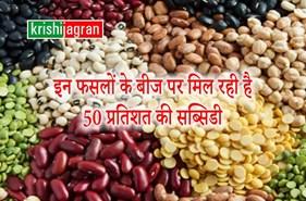 अधिक से अधिक दलहनी फसलों की करें बुवाई, बीजों पर 50 प्रतिशत सब्सिडी लाभ उठाएं : कृषि मंत्री