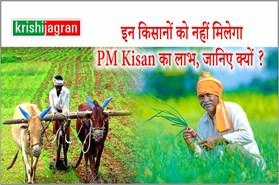 PM Kisan Samman Nidhi Scheme : घर में अगर कोई टैक्सदाता है तो नहीं मिलेगा लाभ