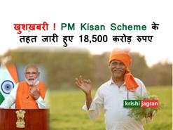 लॉकडाउन के दौरान PM Kisan Scheme के तहत किसानों के लिए जारी किए गए 18,500 करोड़ रुपए