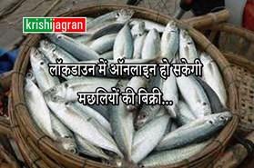 लॉकडाउन में ऑनलाइन हो सकेगी मछलियों की बिक्री, लॉच हुआ ऐप