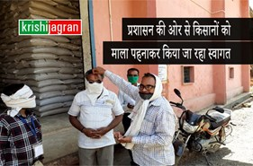 मन्दसौर प्रशासन की अनोखी पहल, किसानों को तिलक लगाकर माला पहनाकर किया जा रहा  स्वागत