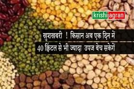 सरसों,चना एवं मसूर की उपज किसान अब एक दिन में 40 क्विंटल से भी ज्यादा बेच सकेगें