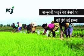 मानसून 2020:  खेतों से धान का बीज उठाने पर नहीं पड़ेगा असमान वर्षा का प्रभाव