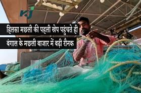मानसून 2020: शुरूआत में ही मछुआरों को हाथ लगी 40 टन हिलसा मछली