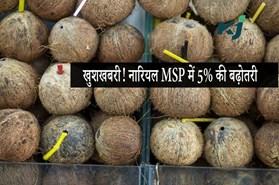 खुशखबरी! नारियल के न्यूनतम समर्थन मूल्य में 5% की बढ़ोतरी, लाखों किसानों को मिलेगा फायदा