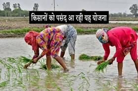 मेरा पानी मेरी विरासत योजना को मिला किसानों का समर्थन, 8000 हेक्टेयर में कम हुई धान रोपाई