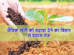 बिहार में जैविक खेती को बढ़ावा देने का प्रयास तेज