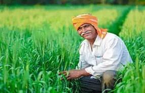 इस राज्य में होगी मौसम आधारित खेती, 30 जिलों में खर्च किये जाएंगे 2.38 अरब रुपये