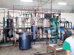 जैतून रिफाइनरी में तेल निकालने का काम शुरू, इस राज्य के किसान ले रहे लाभ