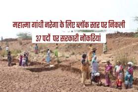 महात्मा गांधी नरेगा के लिए ब्लॉक स्तर पर 37 पदों पर सरकारी नौकरियां, मासिक सैलेरी 30 से 35 हजार रुपए