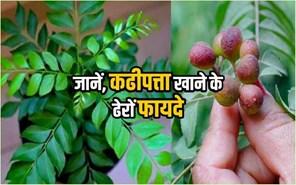 कढ़ीपत्ता: एक बहु-उपयोगी पौधा