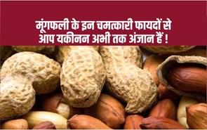 Benefits of peanuts: सर्दियों में तंदुरुस्त रहने के लिए खाएं मूंगफली, जानिए अन्य लाभकारी फायदे