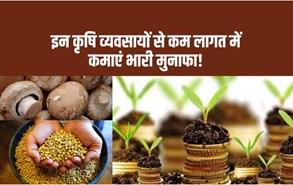 Profitable Agribusiness Ideas- भारत के सबसे मशहूर कृषि व्यवसाय