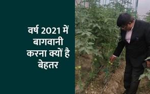 वर्ष 2021 में बागवानी करना क्यों है बेहतर?