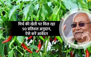 मुख्यमंत्री बागवानी मिशन योजना के तहत किसानों को सौगात, मिर्च की खेती पर 50 प्रतिशत अनुदान