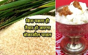 बिना पकाए ही तैयार हो जाएगा बोकासौल चावल, जानिए इस चावल की विशेषता और उत्पादन क्षमता