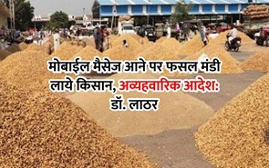 मोबाईल मैसेज आने पर फसल मंडी लाये किसान, अव्यहवारिक आदेश: डॉ. लाठर