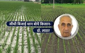 रोपाई नहीं, भूजल व लागत बचत वाली सीधी बिजाई धान बोयें किसान
