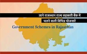 Government Schemes: भूमि विकास बैंक की कृषि ऋण  योजनाएं