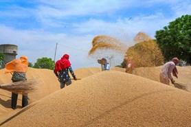 जरूरी खबर: यास तूफान से बिगड़े हालात, अब  मध्य प्रदेश के इन जिलों में नहीं होगी गेहूं की खरीद