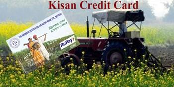 3 लाख रुपए तक के कृषि लोन पर किसानों को नहीं देना पड़ेगा ब्याज, पढ़ें कृषि से जुड़ी और खबरें