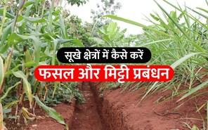 शुष्क कृषि क्षेत्रों में फसलों और मिट्टी की जल उपयोग क्षमता बढ़ाने की तकनीक