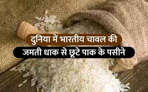 विदेशों में भारतीय चावल की बढ़ती मांग से क्यों घबराया पाकिस्तान ? आइए जानते हैं पूरा मामला