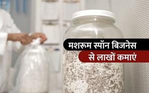 मशरूम बीज उत्पादन के बिजनेस से करें कमाई, जानें पूरी प्रक्रिया