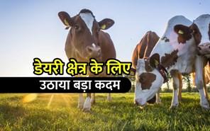 Dairy Sector में निवेश को बढ़ावा देने के लिए बड़ा कदम, पशुपालक और किसानों को होगा फायदा