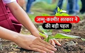 जम्मू-कश्मीर संभाग में लगाए जाएंगे 14 लाख पौधे, सरकार ने उठाया ये बड़ा कदम
