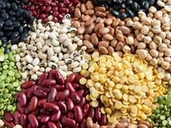 सोयामील के आयात को सरकार ने दी मंजूरी, जानिएं कृषि की महत्वपूर्ण खबरें