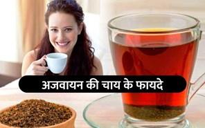 अजवायन की चाय सेहत के लिए है लाभकारी
