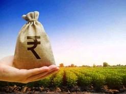 कृषि क्षेत्र में बिजनेस आइडिया देकर पाएं 5 से 25 लाख रुपए तक का अनुदान!