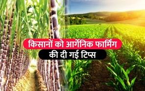 गन्ना विकास विभाग ने किसानों को आर्गेनिक फ़ार्मिंग का दिखाया रास्ता