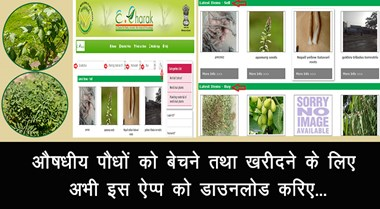 Download this app now to sell and buy medicinal plants ...