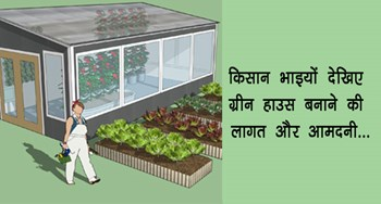 green house Budget