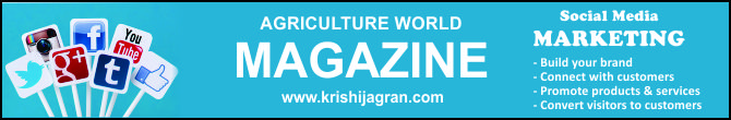KJ Magazines Subscription