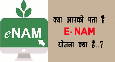 Do you know what the E-NAM plan is ..?