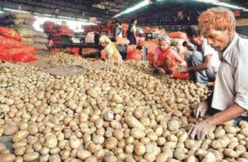 Potato prices may seem to be overloaded.