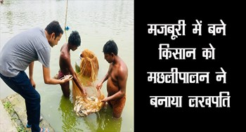 Lakhpati made fish farmer in forced labor