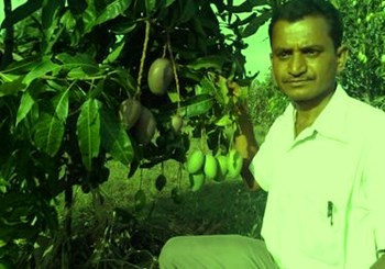 mango farmer Success Story