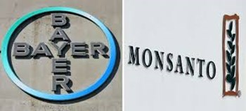 Bayer Monsanto News