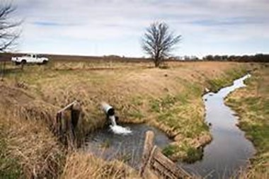 Article on Water Pollution