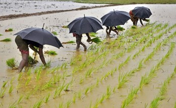 Monsoon may accelerate in next three days